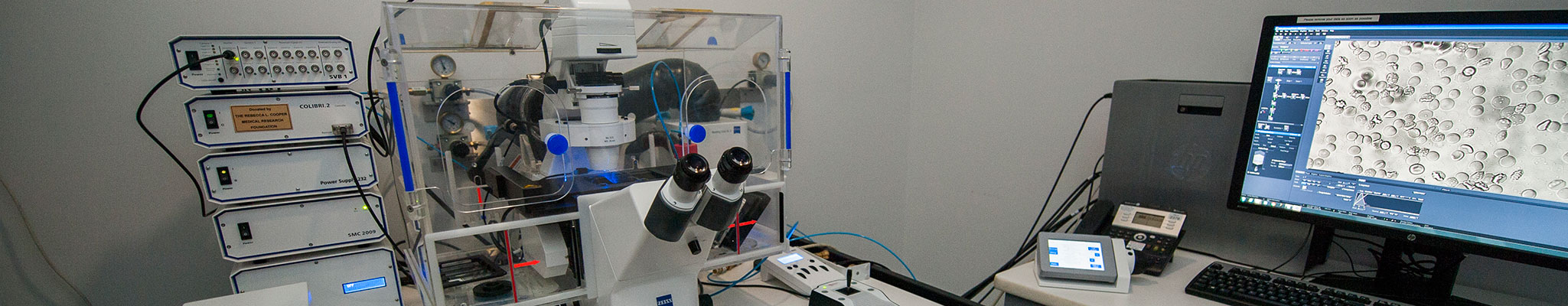 Zeiss Axio Observer microscope set up