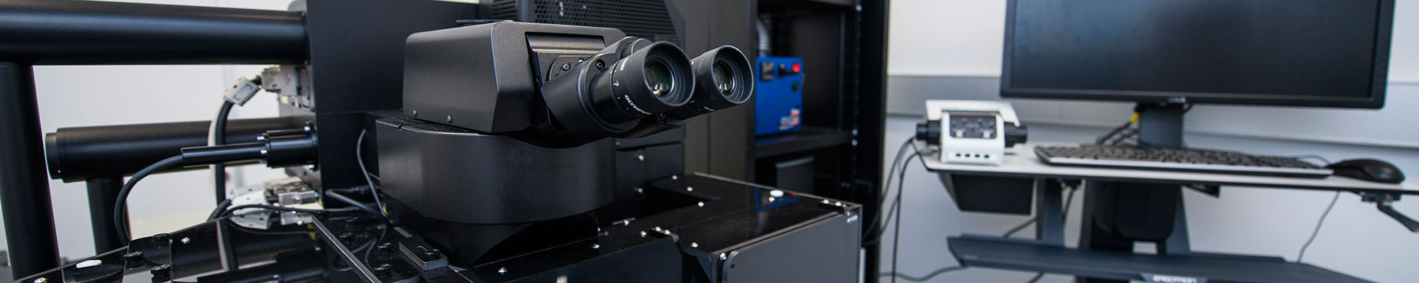Olympus FVMPE-RS microscope