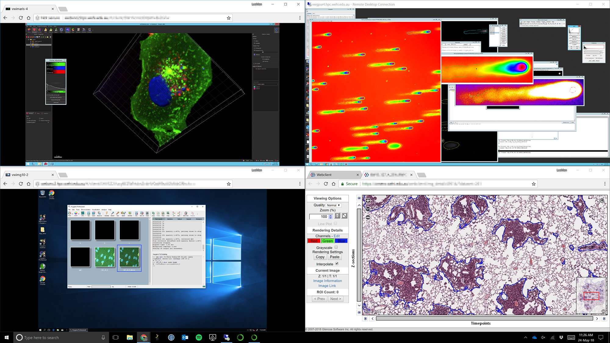 Bioimage Analysis   Centre for Dynamic Imaging